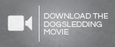 Dogsled - Vimeo download UK-01